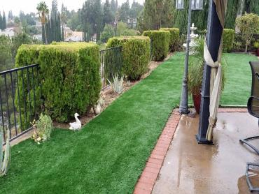 Artificial Grass Photos: Outdoor Carpet Lakeside, California Paver Patio, Backyard Designs