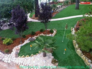 Artificial Grass Photos: Outdoor Carpet Los Angeles, California Lawns, Backyard Landscape Ideas