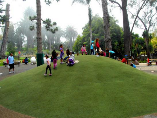 Artificial Grass Photos: Outdoor Carpet Wilsonia, California Kids Indoor Playground, Recreational Areas