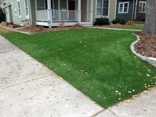 Artificial Grass Photos: Outdoor Carpet Woodville, California Backyard Playground, Front Yard Landscape Ideas