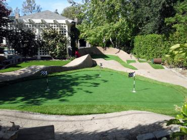 Artificial Grass Photos: Plastic Grass Ballard, California Landscaping Business, Backyard Designs