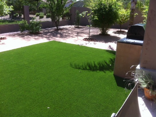 Artificial Grass Photos: Plastic Grass Long Barn, California Gardeners, Backyard Landscaping Ideas