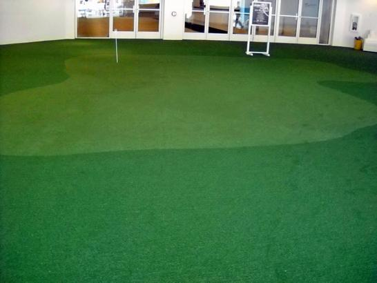 Synthetic Grass Cost Farmersville, California Garden Ideas, Commercial Landscape artificial grass