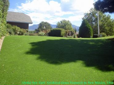 Artificial Grass Photos: Synthetic Grass Cost Hollywood, California Dog Parks, Backyard Designs
