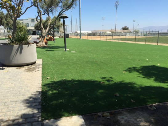 Artificial Grass Photos: Synthetic Grass Cost Lathrop, California Rooftop, Parks