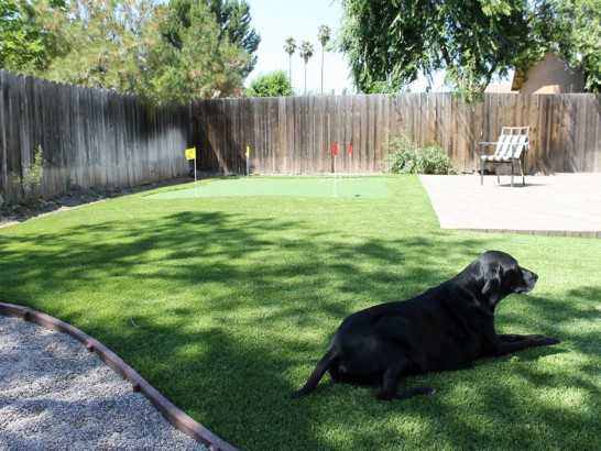 Artificial Grass Photos: Synthetic Grass Cost Pasatiempo, California Indoor Putting Green,  Dog Kennels