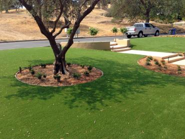 Artificial Grass Photos: Synthetic Grass Keene, California Landscaping Business, Front Yard Landscaping Ideas