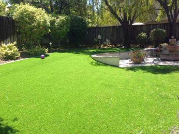 Artificial Grass Photos: Synthetic Grass La Habra, California Rooftop, Backyard Designs