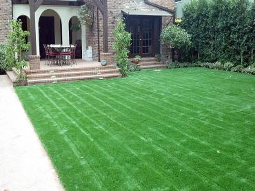 Artificial Grass Photos: Synthetic Grass Lake Hughes, California Lawns, Front Yard Landscape Ideas