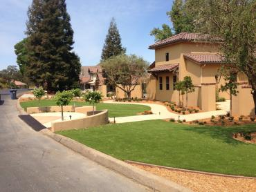 Artificial Grass Photos: Synthetic Grass Newport Beach, California Landscaping Business, Front Yard Design