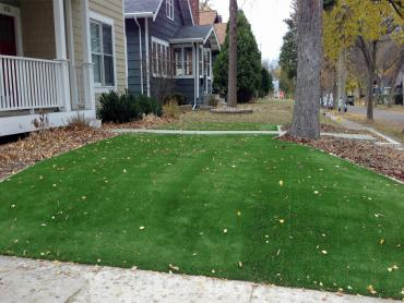 Artificial Grass Photos: Synthetic Lawn Fillmore, California Roof Top, Front Yard Design