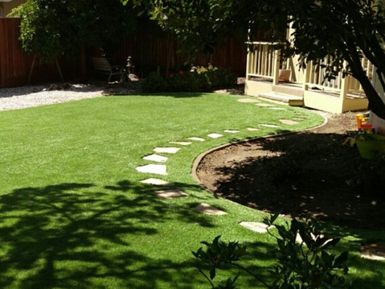 Synthetic Lawn Fort Jones, California City Landscape, Backyard Ideas artificial grass