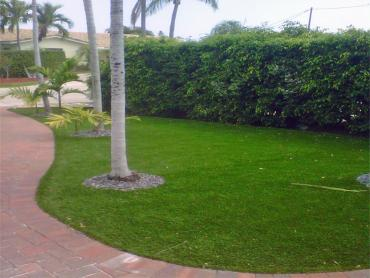 Artificial Grass Photos: Synthetic Turf Camarillo, California Landscape Rock, Front Yard Landscaping