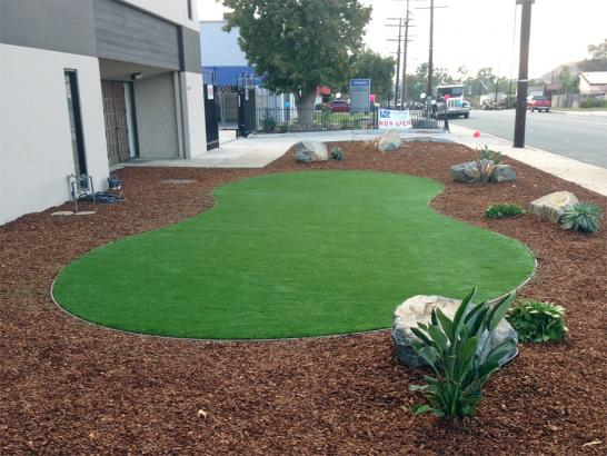 Artificial Grass Photos: Synthetic Turf Cambria, California Garden Ideas, Commercial Landscape
