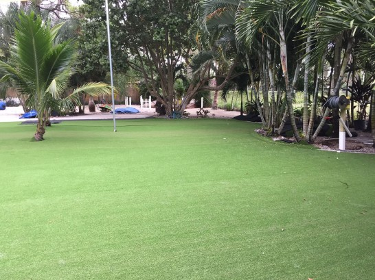 Artificial Grass Photos: Synthetic Turf Supplier Angels Camp, California Design Ideas, Commercial Landscape