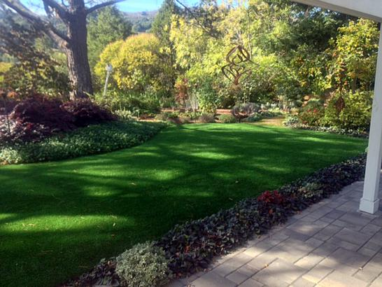 Artificial Grass Photos: Synthetic Turf Supplier Avenal, California Design Ideas, Backyard Landscape Ideas