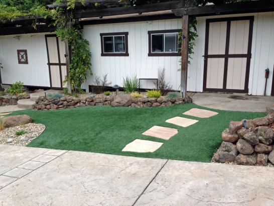 Artificial Grass Photos: Synthetic Turf Supplier Delano, California Landscape Design, Front Yard Landscaping Ideas