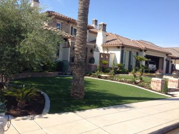 Artificial Grass Photos: Synthetic Turf Supplier El Cerrito, California Garden Ideas, Front Yard Landscape Ideas
