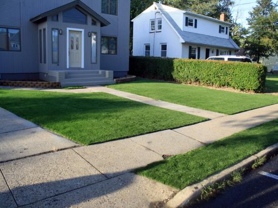 Artificial Grass Photos: Synthetic Turf Supplier Seeley, California Design Ideas, Landscaping Ideas For Front Yard