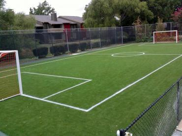Artificial Grass Photos: Turf Grass Claremont, California Backyard Sports, Commercial Landscape