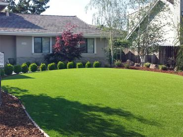 Artificial Grass Photos: Turf Grass Malibu, California Landscape Design, Landscaping Ideas For Front Yard