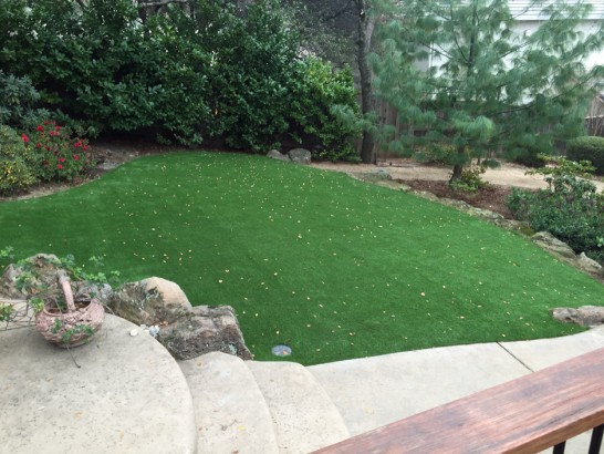Artificial Grass Photos: Turf Grass Soulsbyville, California Design Ideas, Beautiful Backyards