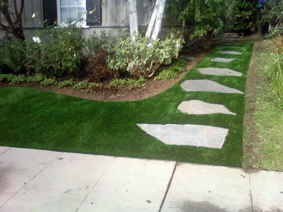 California Landscaping Ideas synthetic grass keeler, california landscape photos, front yard ideas